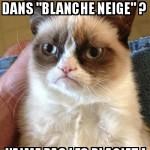"""Grumpy Cat regarde """"Blanche neige"""" de Disney"""