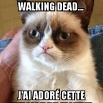 Les Zombies...