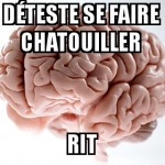 Chatouillages