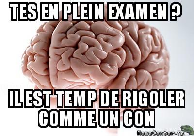 cerveau drole