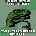 Asking le Veloceraptor