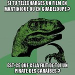 Pirate informatique.. des caraïbes :/